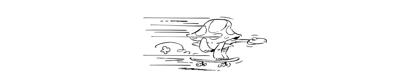 Badeau contact tortue vitesse (f)