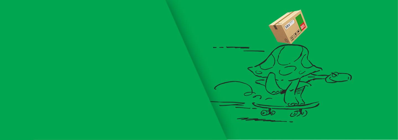 Fullwidth green background